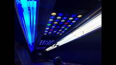 T5 Hybrid Reef Light Led T 5 Hybrid Aquarium Lighting Upgrade Youtube