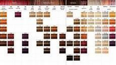 Igora High Power Browns Color Chart Pinterest The World S Catalog Of Ideas