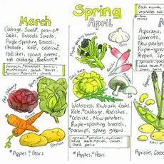 Vegetable Season Chart Uk Seasonal Uk Fruit And Vegetable Chart Liz Cook Charts