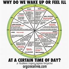 Chinese Body Chart Tcm Body Clock Why Do We Wake Up Or Feel Ill At A Certain