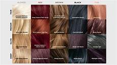 Loreal Hair Color Color Chart Our L Or 233 Al Paris F 233 Ria Hair Color Chart L Or 233 Al Paris
