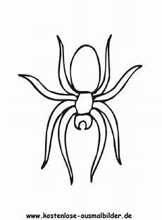 Malvorlagen Spinnen Ausmalbild Spinne 3 Zum Ausdrucken