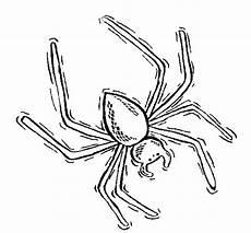 Malvorlagen Insekten Insekten Malvorlagen Malvorlagen1001 De