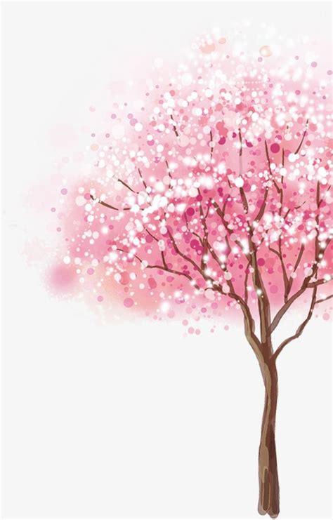 Sakura Como