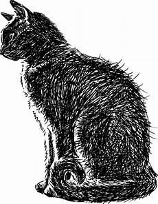 Malvorlage Sitzende Katze Sitzende Katze Vektor Abbildung Illustration