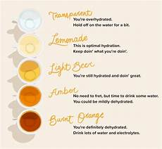 Dehydration Chart Hydration Chart Learn To Read The Shades Of Your