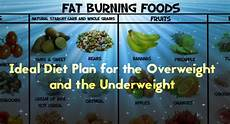 Overweight Diet Chart Ideal Diet Plan For The Overweight And The Underweight
