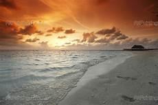 strand solnedgang fototapet plakater solnedgang strand mcpo1027da