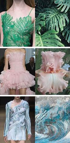 Design By Nature Tanov Side By Side Photos Reveal How High Fashion Is Inspired By