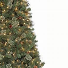 Martha Stewart Living Christmas Tree Lights Martha Stewart Living 9 Ft Alexander Pine Quick Set
