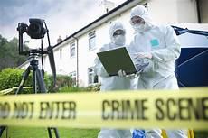 Investigation Jobs Government Job Profile Crime Scene Investigator
