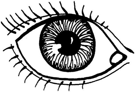 Eyeball Coloring Pages coloring parts of the eye foot ear child