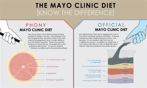 guide to types of weight loss surgery mayo clinic doctor s opinion the 9 most effective diets