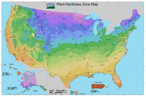 garden zone map find your gardening zone bonnie plants