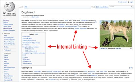 link to section of page how to link content internally in wordpress posts and pages