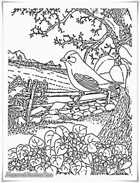 17 terbaik ide tentang buku mewarnai di coloring pages teknik menggambar dan