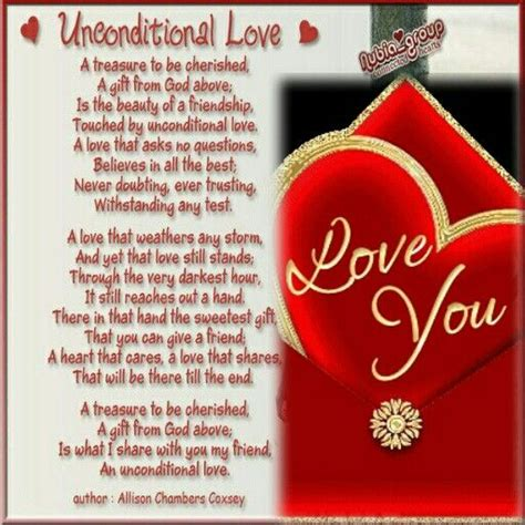 themes about unconditional love unconditional love wonderful words pinterest love