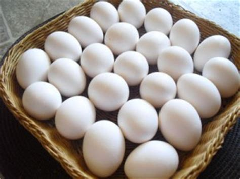 Liver Detox Eggs by Eat Your Eggs Choline And The Link With Fatty Liver