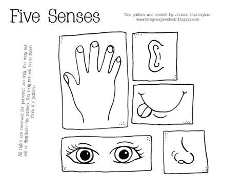 five senses worksheets for kindergarten five senses