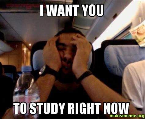 I Need You Meme - i want you to study right now make a meme