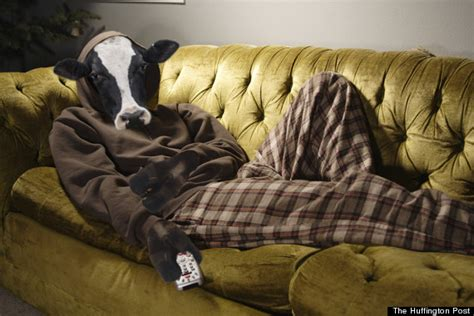 cow couch cows are the root of all evil and we re too hungry to