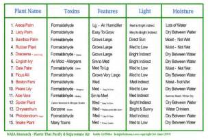 Best Herbs To Grow Indoors transformations life coaching plants that purify your air