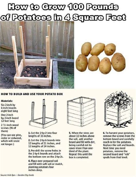 diy homestead projects 16 cool homesteading diy projects for preppers