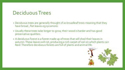 what do trees symbolize vegetation in landscape