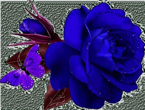 imagenes de rosas azules con brillo y movimiento rosas azules gif animadas con movimiento imagui