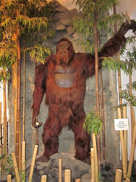 bigfoot west coast a history of gorillas and other monsters in california oregon and washington state books gigantopithecus largest ape lived dinoanimals