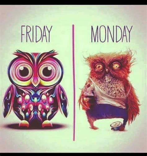 Friday Monday Meme - friday vs monday memes pinterest mondays