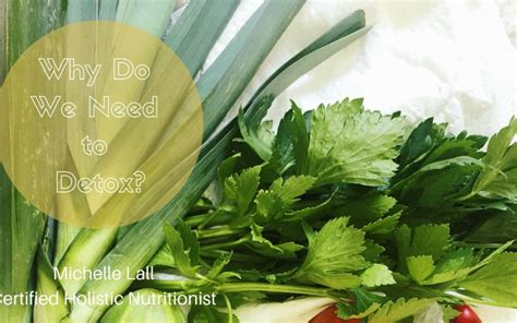 Do We Need To Detox by Why Do We Need To Detox Lall Nutrition