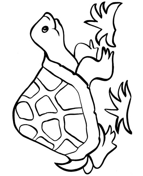 Free Printable Easy Coloring Pages Easy Shapes Coloring Pages Free Printable Happy Turtle by Free Printable Easy Coloring Pages