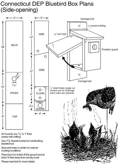 Birdhouse Plans Bluebird How To Making Woodwork Pdf Bluebird House Plans