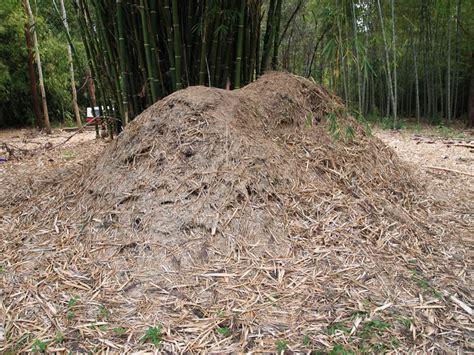 bamboo australia 187 bamboo mulch charcoal