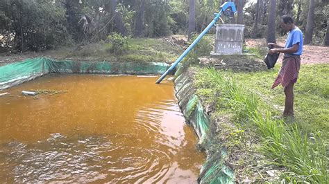 Backyard Fishpond Philippines Fish Farming Pond Design Www Imgkid Com The Image Kid