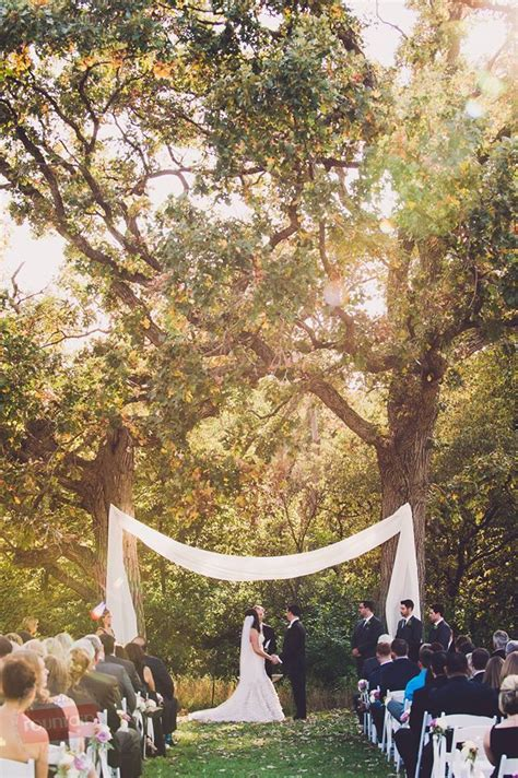 Wedding Arch Between Trees by Drapery Between Two Oak Trees At The Ceremony Site