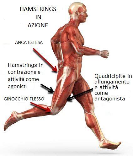 formicolio alle gambe da seduto dolore alla gamba destra infiammazione nervo sciatico