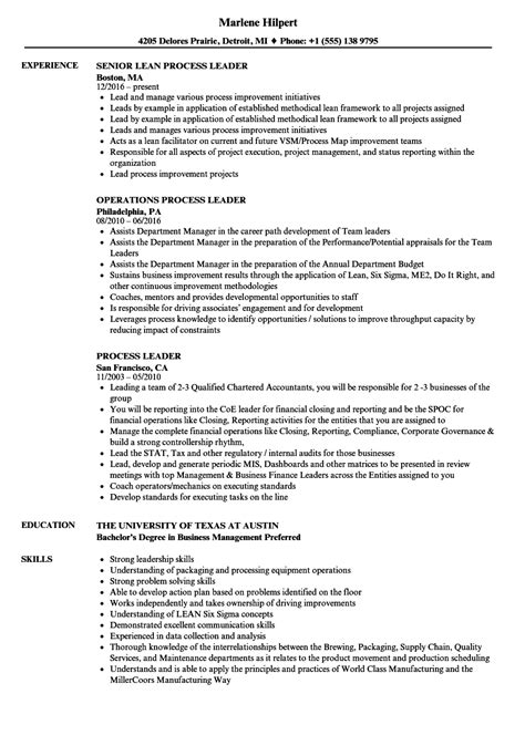 data analyst description resume heat maps exle