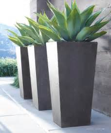 Planters Modern by Best 25 Front Door Plants Ideas On Front Door