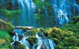 beautiful waterfalls with flowers viewing gallery