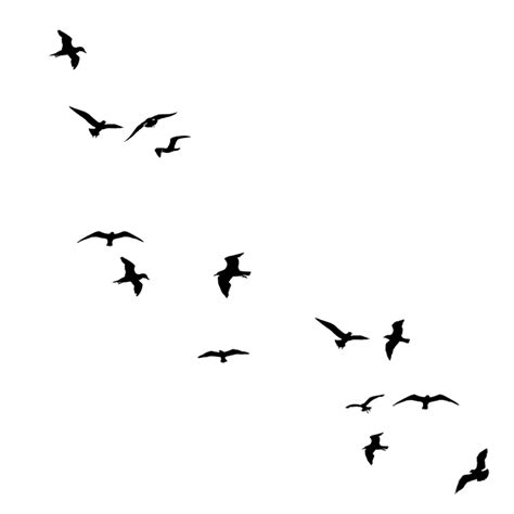 tattoo bird png birds pajaros tumblr blackfreetoedit