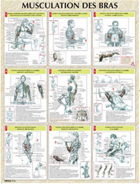 librerie musicali gratis librairie musique vigot poster musculation des bras 1