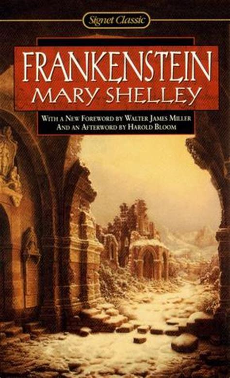 frankenstein books shelley s frankenstein a book review