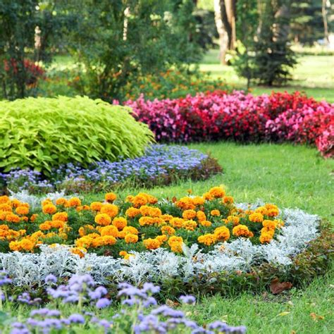 3 easy care flower bed ideas