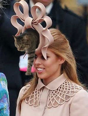 Princess Beatrice Hat Meme - catsparella princess beatrice s cat in the hat