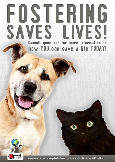 fostering a global appeal for foster homes fostering saves lives lets adopt global
