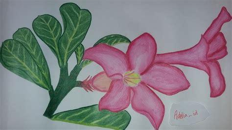 Biji Bunga Kamboja Bali cara melukis bunga kamboja www imgkid the image