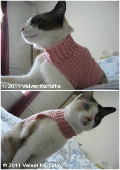 Turtleneck Cat Sweater 25 and easy crochet patterns for your cat page 2 of