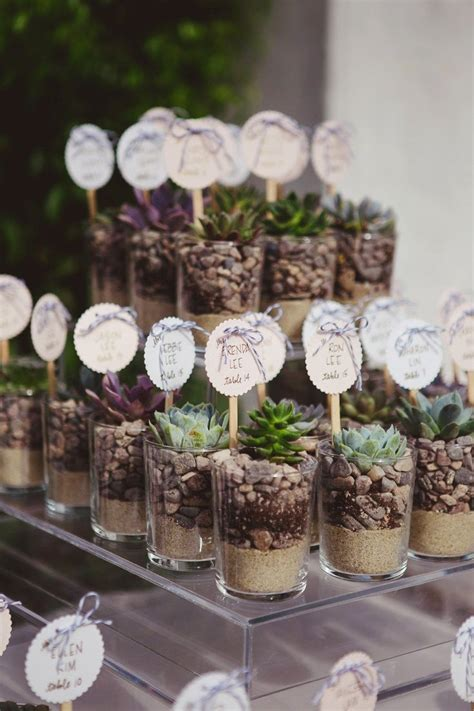 8 Honeymoon Ideas by Best 25 Succulent Wedding Favors Ideas On